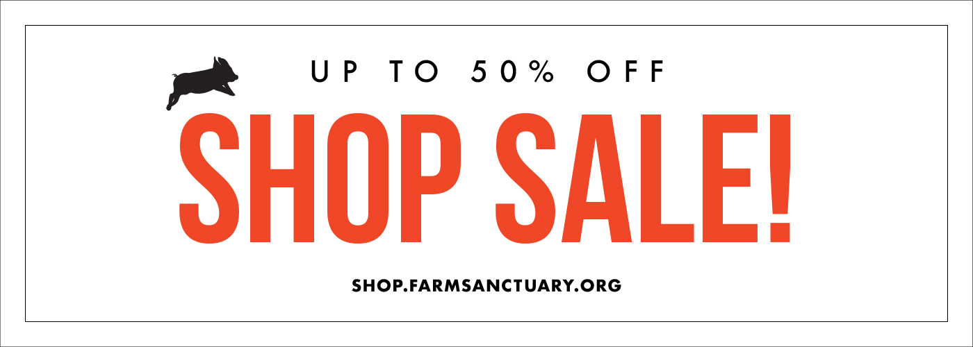 Shop Sale Items - Up to 50% off!