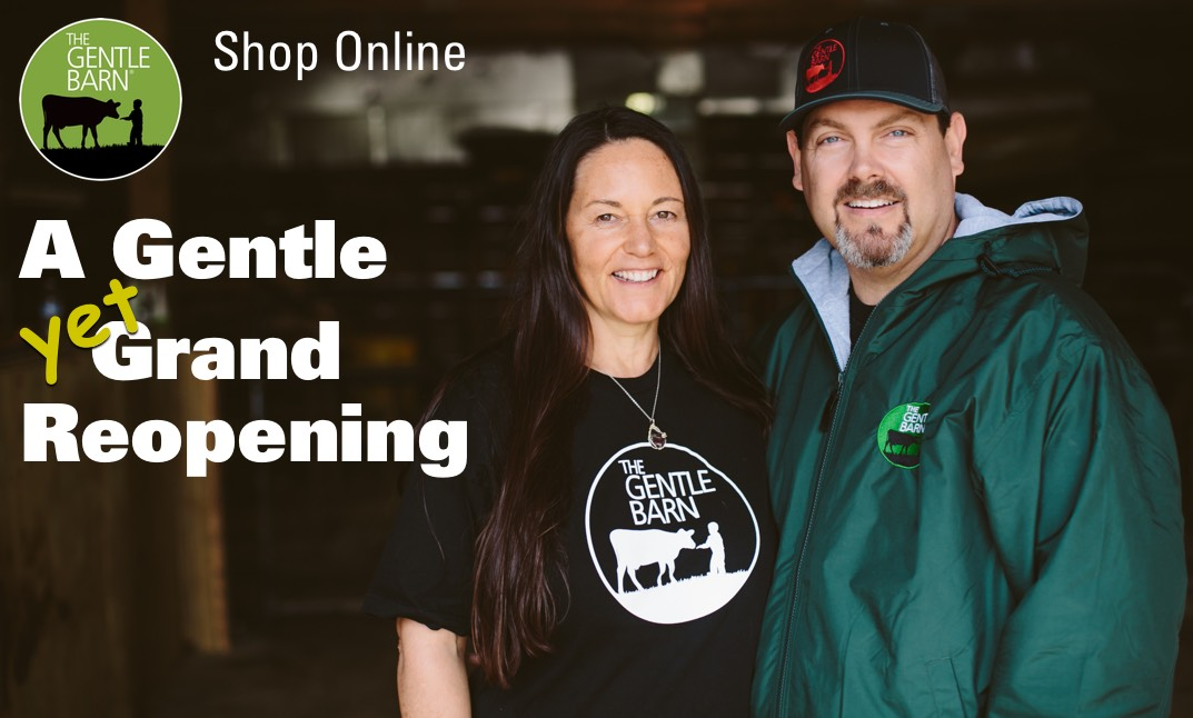 Welcome to our eStore Grand Reopening!