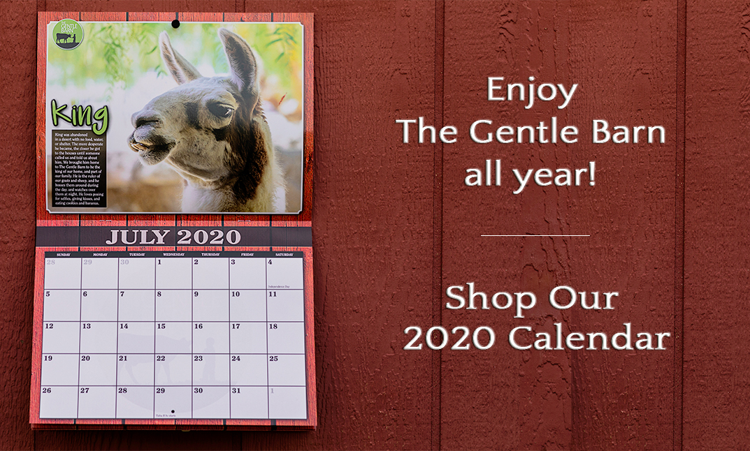 Enjoy The Gentle Barn all year! Click to shop our 2020 calendar.