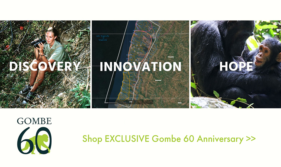 Shop our new Gombe 60th Anniversary collection!